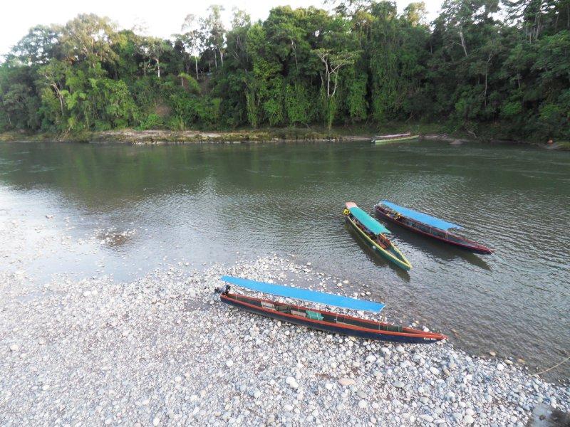 моторные каноэ река Напо / Ecuador Misahualli